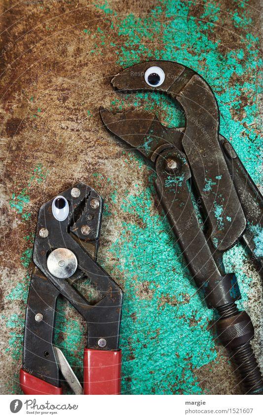 Hör gut zu..... Arbeit & Erwerbstätigkeit Beruf Handwerker Arbeitsplatz Baustelle Dienstleistungsgewerbe Werkzeug Schere Technik & Technologie Tier Vogel 2