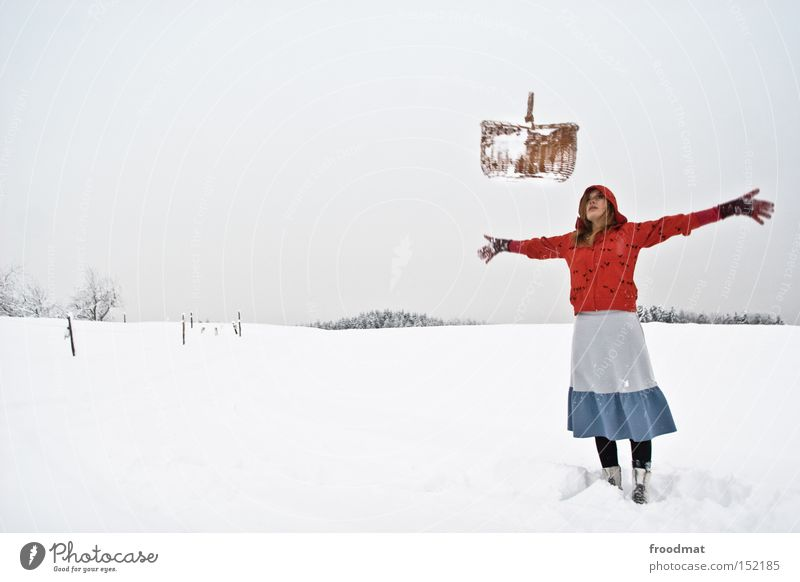 i've got the power weiß Baum ruhig Winter kalt Berge u. Gebirge Schnee grau Schweiz Märchen kahl Korb Rotkäppchen