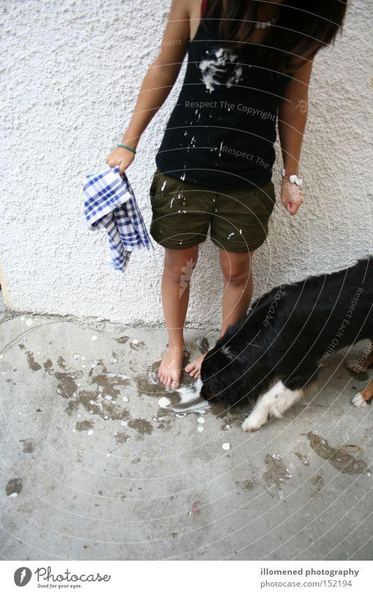 Putzfee Hund Speiseeis Sommer Ernährung dreckig lutschen Freude Australian Shepherd Vanille Leila black-tri