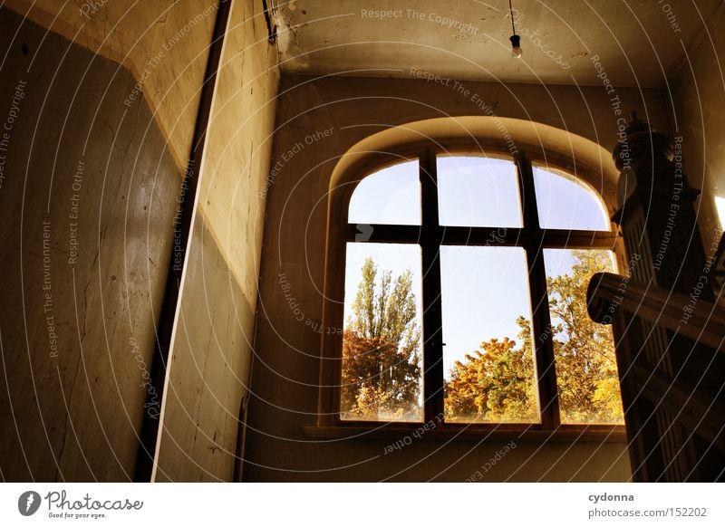 Aufstieg Haus Villa Fenster Licht altmodisch Leerstand Raum Häusliches Leben Zeit Vergänglichkeit Klassik Treppenhaus Nostalgie Jahrhundert verfallen Einsamkeit