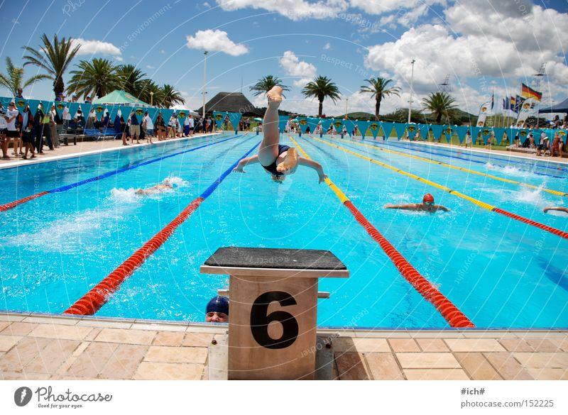Sechser im Wasser II Wasser blau Wolken Sport Spielen fliegen Beginn Luftverkehr Schwimmbad Palme 6 Sprungbrett Badehose Schwimmsportler kopfvoran