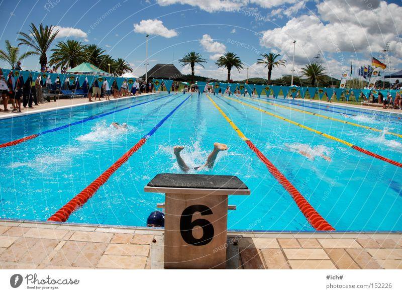 Sechser im Wasser III Wasser blau Wolken Sport Spielen fliegen Beginn Luftverkehr Schwimmbad tauchen Palme 6 Sprungbrett Badehose Schwimmsportler kopfvoran