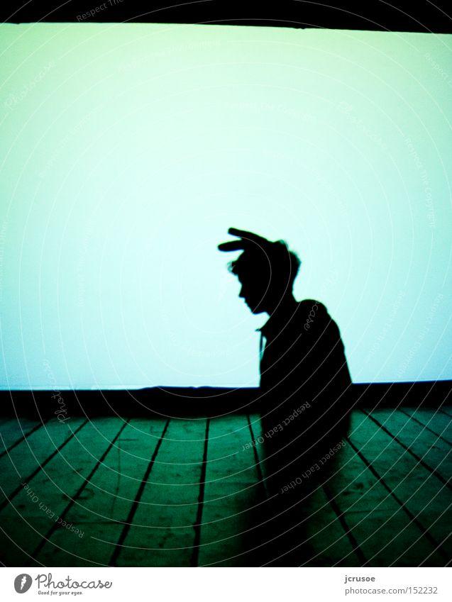 anti hase weiß grün ruhig Tier dunkel Traurigkeit Silhouette Vertrauen Theater Theaterschauspiel Kino Hase & Kaninchen Projektionsleinwand Technik & Technologie