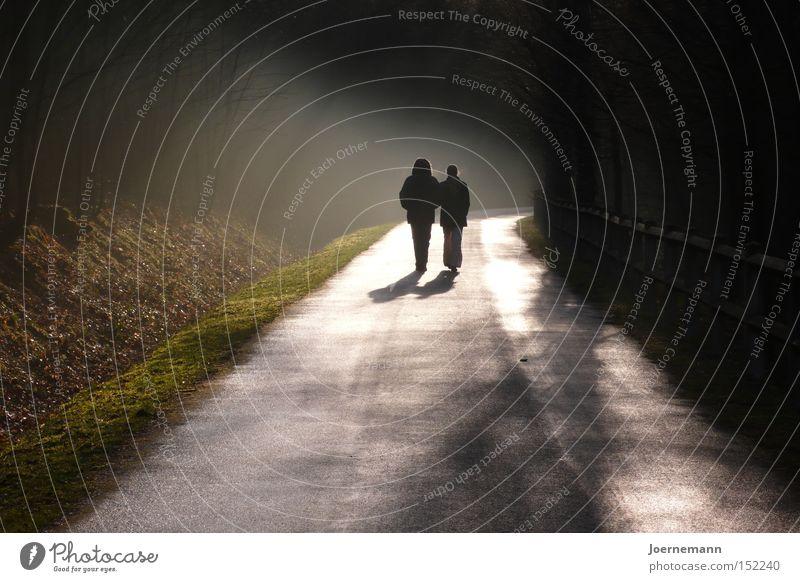 Abendspaziergang Herbst Glück Wege & Pfade Paar Zufriedenheit Zusammensein Nebel wandern paarweise Spaziergang Abenddämmerung Liebespaar gehen Ehepaar Gegenlicht