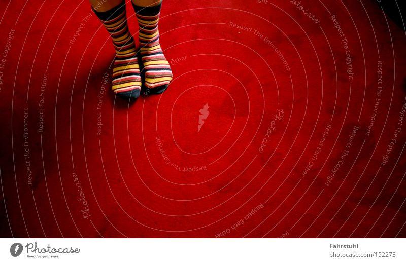 Ringelsocken 2 Frau rot Beine Bekleidung Rock Wohnzimmer Strümpfe Teppich Bodenbelag