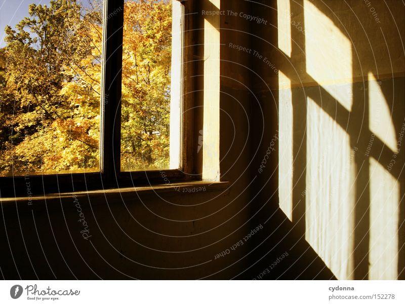 Herbsttag Haus Villa Fenster Licht altmodisch Leerstand Raum Häusliches Leben Zeit Vergänglichkeit Klassik Treppenhaus Nostalgie Jahrhundert verfallen