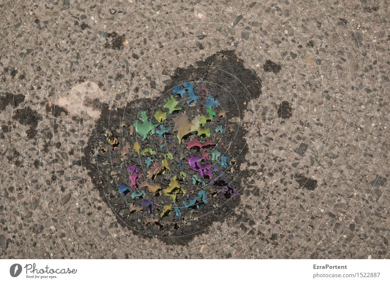 oily street photography Verkehrswege Straße Wege & Pfade mehrfarbig grau schwarz Erdöl Fleck Ölfleck dreckig Umweltverschmutzung Umweltkatastrophe Umweltsünder