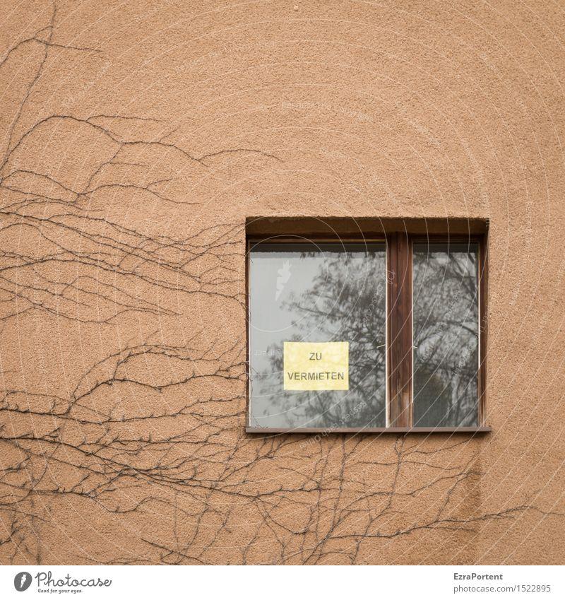 Studio Braun - Interesse? Pflanze Haus Fenster Wand Gebäude Mauer braun Fassade Wohnung orange Häusliches Leben Schilder & Markierungen Hinweisschild Bauwerk