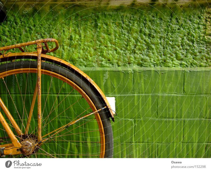 Made in GDR alt grün Wand Mauer orange Fahrrad verfallen Rost Rad Reifen Rücklicht Extremsport