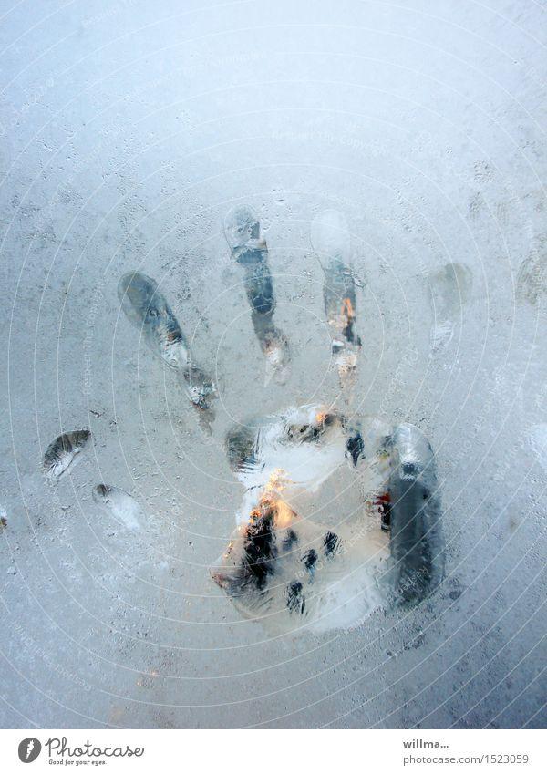 das eiskalte händchen n°2 Winter Eis Frost Handabdruck gefroren Glasscheibe Fenster Eisblumen Fingerabdruck hell-blau Farbfoto Textfreiraum oben