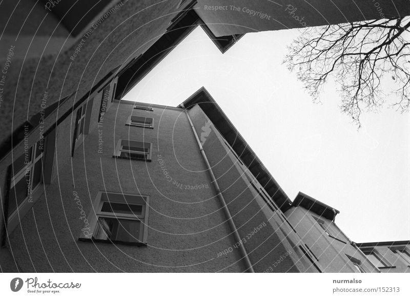 Ekzorzist die letzte 08 Himmel Haus Berlin Fenster Architektur Treppe Ecke trist Dach analog Etage Hinterhof Symmetrie Hof Potsdam Dachrinne