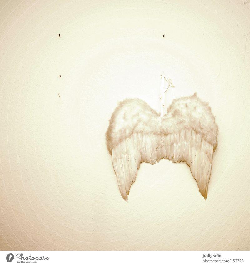 Frohe Weihnachten Weihnachten & Advent weiß Winter Wand Tier Religion & Glaube Tapete Feste & Feiern fliegen Wandel & Veränderung Feder Engel