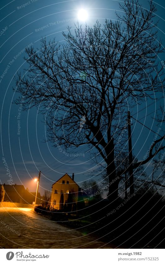 Der Vollmond hält mich wach Baum ruhig Haus Einsamkeit Straße Dorf Laterne Mond Verkehrswege Stillleben ländlich Bautzen Vollmond Mitternacht Weickersdorf