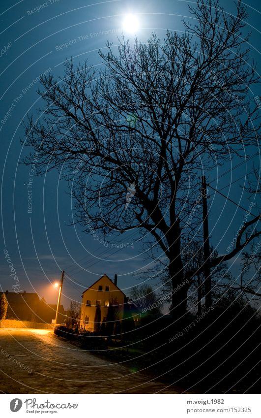 Der Vollmond hält mich wach Mond Straße Baum Laterne Dorf ländlich Stillleben Mitternacht Nacht ruhig Einsamkeit Haus Weickersdorf Verkehrswege