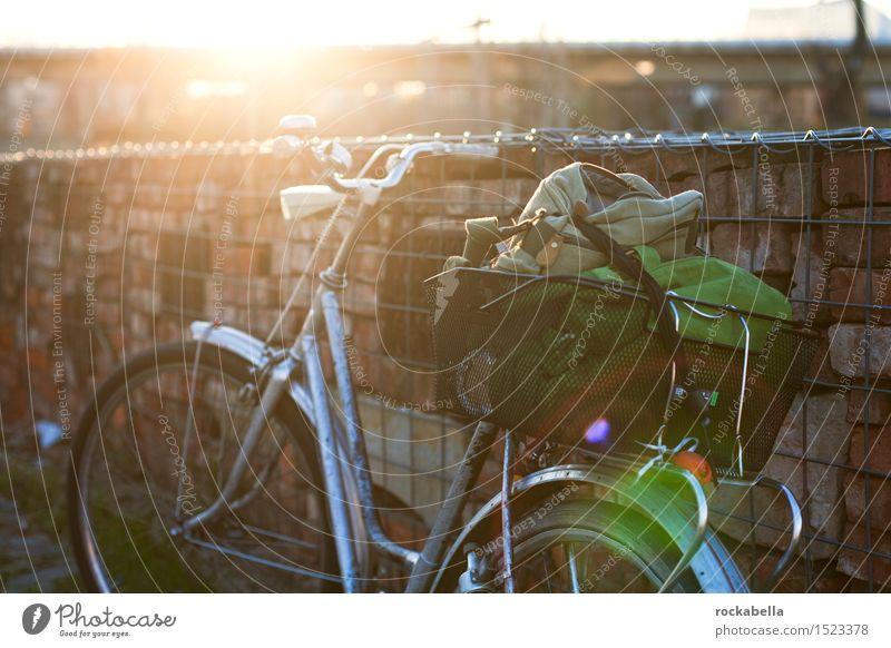 Fahrrad im Gegenlicht Fahrradtour Erholung erleben Freizeit & Hobby Blendenfleck Außenaufnahme Abend Sonnenlicht Schwache Tiefenschärfe