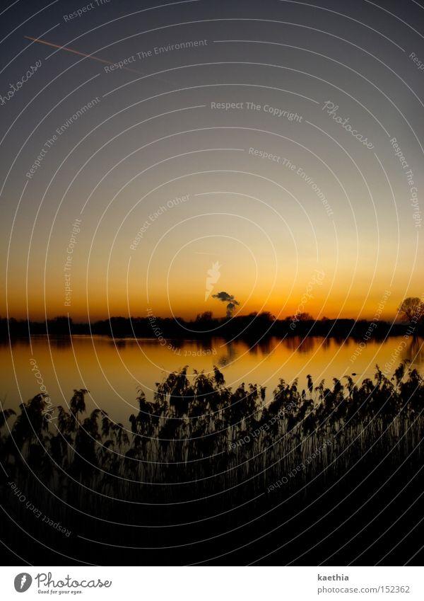 es brennt! Natur Wasser Himmel Pflanze ruhig Ferne Herbst See orange Fluss Sträucher Klarheit Schilfrohr deutlich Abenddämmerung Verlauf