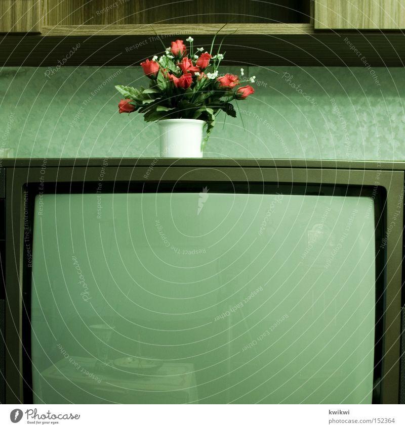 ... Fernseher Fernsehen alt altmodisch Blume Häusliches Leben Wohnzimmer Trauer Statue
