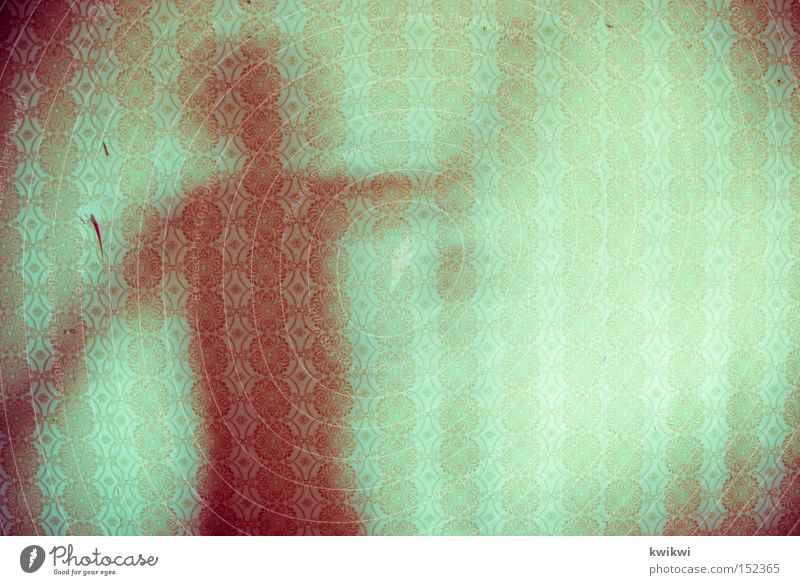 schattentanz Mensch alt Farbe dunkel Wand hell Tapete