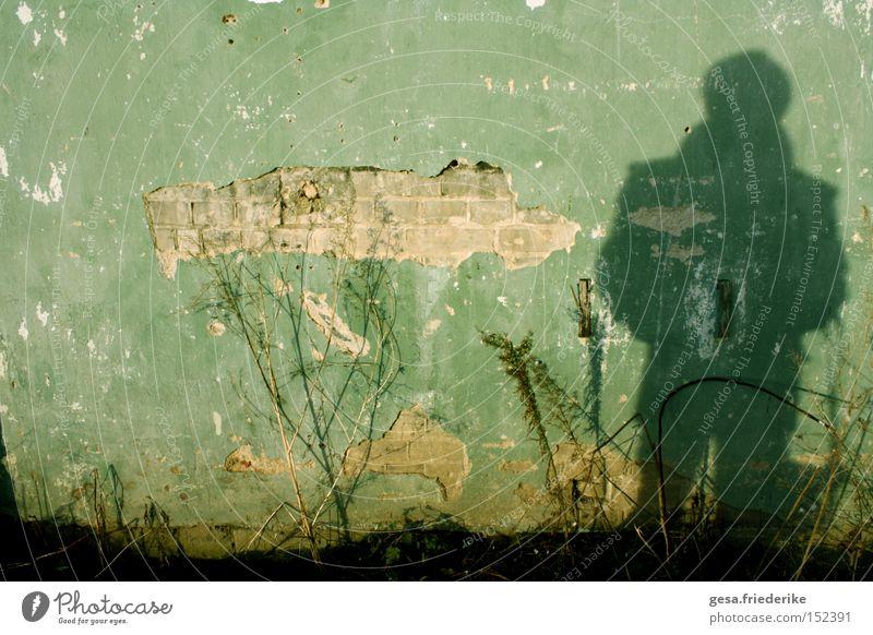 du nimmst gestalt an Mensch Mann Pflanze Wand Traurigkeit Mauer Hoffnung verfallen gebrochen Bruch