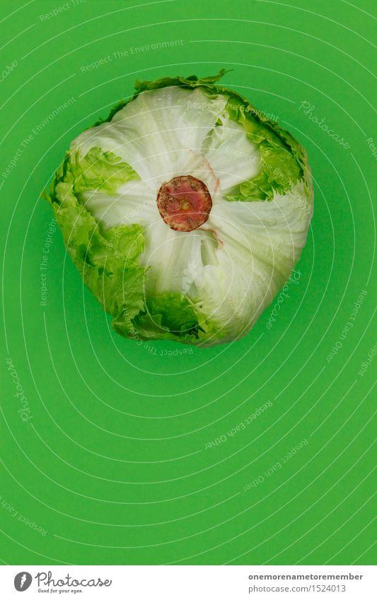 Eisberg vorraus! Lebensmittel Gemüse Salat Salatbeilage Geschäftsessen Bioprodukte Slowfood Kunst ästhetisch Eisbergsalat grün Vegetarische Ernährung