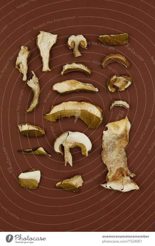 Sammlerstück Kunstwerk ästhetisch Sammlung ansammeln Pilz Pilzhut Pilzsucher Pilzkopf Pilzsuppe viele Waldboden braun Mosaik Steinpilze Feinschmecker