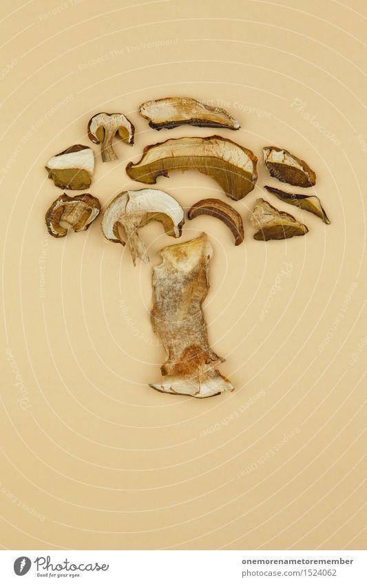 verpilzter Pilz Kunst Kunstwerk ästhetisch Pilzhut Pilzsucher Pilzkopf Pilzsuppe Sammler Steinpilze lecker Kräuter & Gewürze getrocknet beige Collage