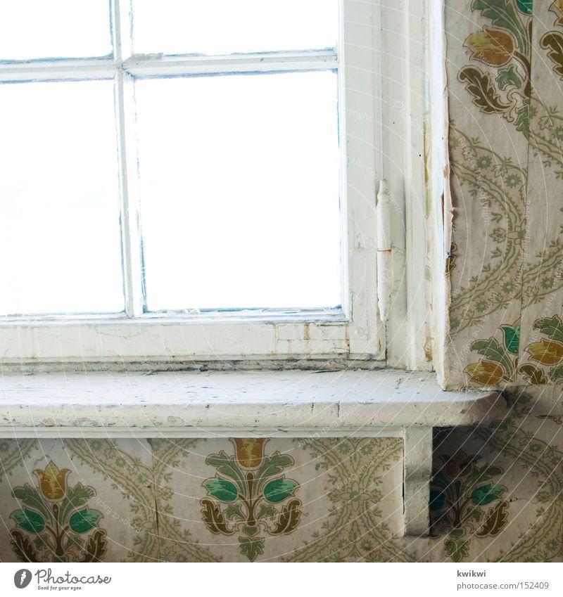 anno 1954 alt Fenster Holz Häusliches Leben Vergänglichkeit verfallen Tapete baufällig