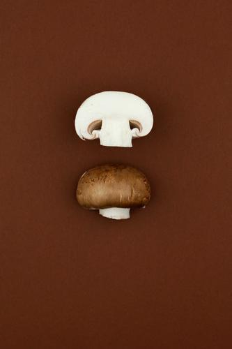 Endgegner halbiert Gesunde Ernährung Kunst braun Dekoration & Verzierung ästhetisch lecker Teilung Pilz Vegetarische Ernährung Kunstwerk Pilzhut geteilt