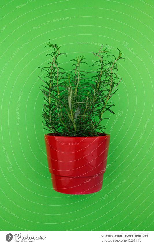 Mit Würze 1 Kunst Kunstwerk ästhetisch Küchenkräuter Rosmarin Kräuter & Gewürze grün Gesunde Ernährung Gesundheit lecker rot Topf Topfpflanze Blumentopf Pflanze