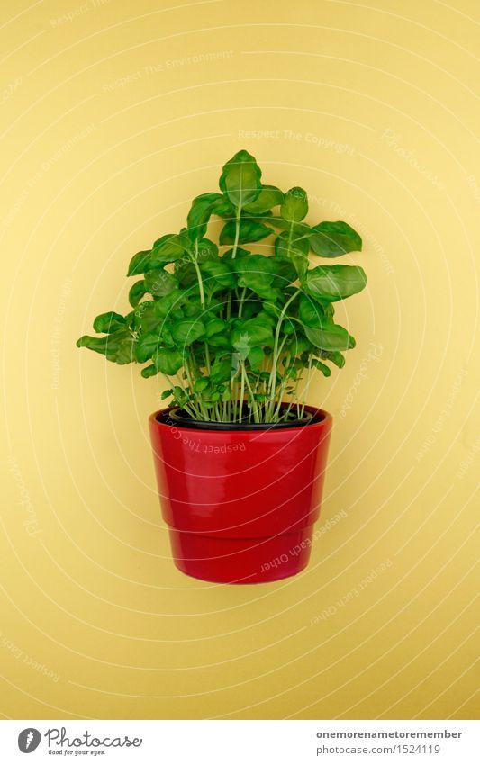 Basilikum im Topf Kunst Kunstwerk ästhetisch Basilikumblatt Topfpflanze grün gelb rot Kräuter & Gewürze Küchenkräuter Ernährung Italienisch mediterran Farbfoto