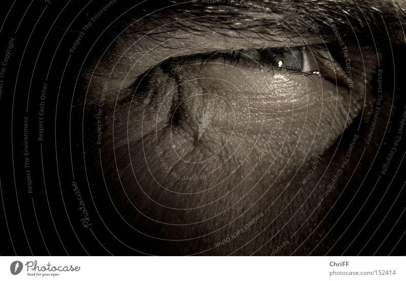 Na los, zieh schon! Ferne Auge dunkel braun Kraft beobachten bedrohlich Wunsch Konzentration Wachsamkeit stechend Western Gesicht stur Duell
