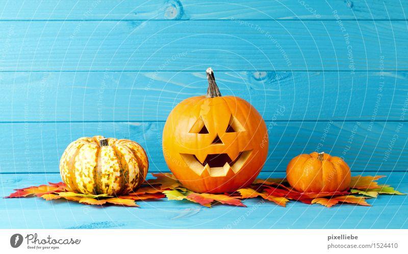 Halloween Gemüse Wohnung einrichten Innenarchitektur Dekoration & Verzierung Tisch Feste & Feiern Erntedankfest Natur Herbst Pflanze Blatt Garten gruselig