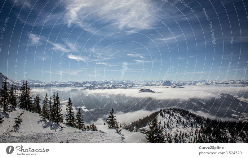 Iceworld Landschaft Urelemente Himmel Wolken Winter Schönes Wetter Nebel Eis Frost Schnee Baum Wald Hügel Alpen Berge u. Gebirge Gipfel Schneebedeckte Gipfel