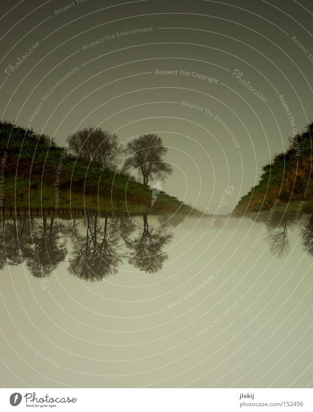 Down Under Wasser Spiegel Reflexion & Spiegelung Bach See Fluss Baum Himmel Wolken Küste Seeufer Flussufer Natur Landschaft Herbst Böschung