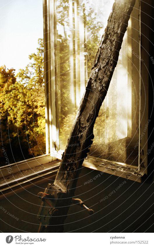 Frischluft Haus Villa Fenster Licht altmodisch Leerstand Häusliches Leben Zeit Vergänglichkeit verbrannt Griff Nostalgie Jahrhundert Holz verfallen Herbst