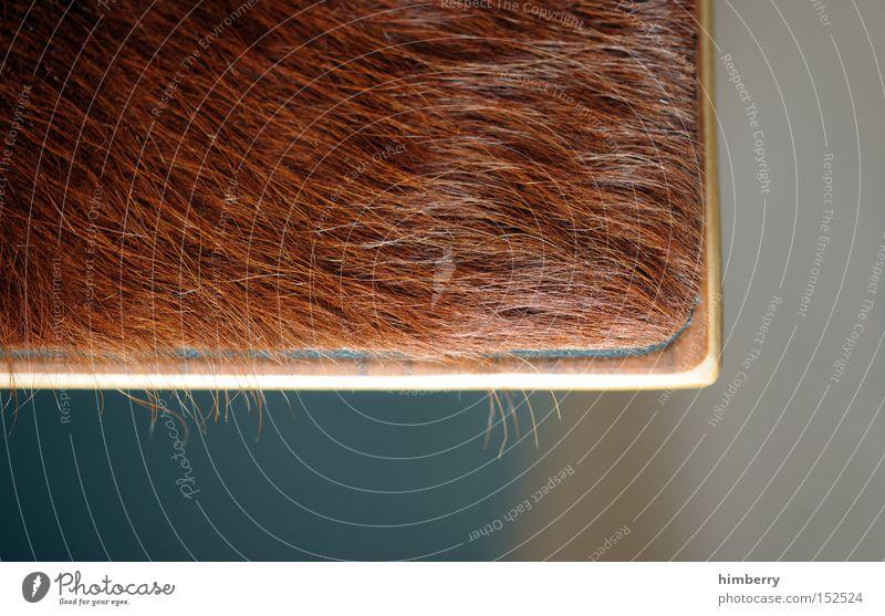 haarige sitzgelegnheit Möbel Innenarchitektur Stil Hocker Sitzgelegenheit Fell Ecke Hintergrundbild Geschmackssinn Strukturen & Formen Ordnung