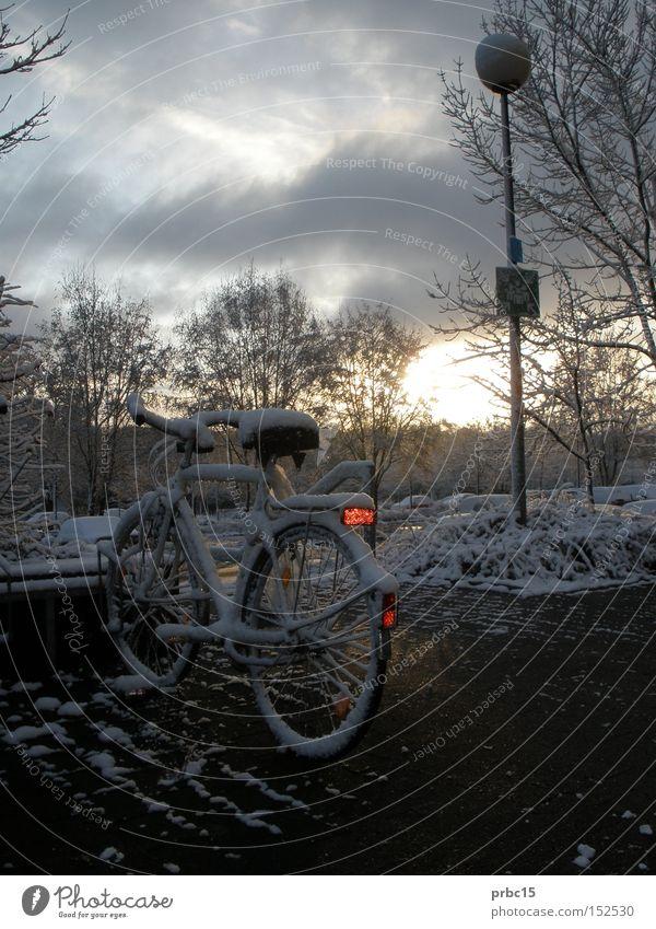 Zugeschneites Fahrrad Himmel weiß blau Winter Einsamkeit Lampe kalt Schnee