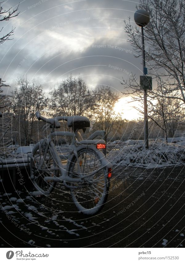 Zugeschneites Fahrrad kalt weiß Himmel blau Winter Lampe Einsamkeit Schnee zugeschneit