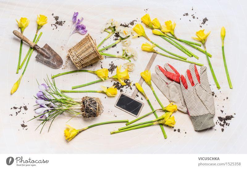 Frühlingsblumen und verschiedene Gartenwerkzeuge Natur Pflanze Blume Blatt gelb Blüte Stil Design Freizeit & Hobby Dekoration & Verzierung