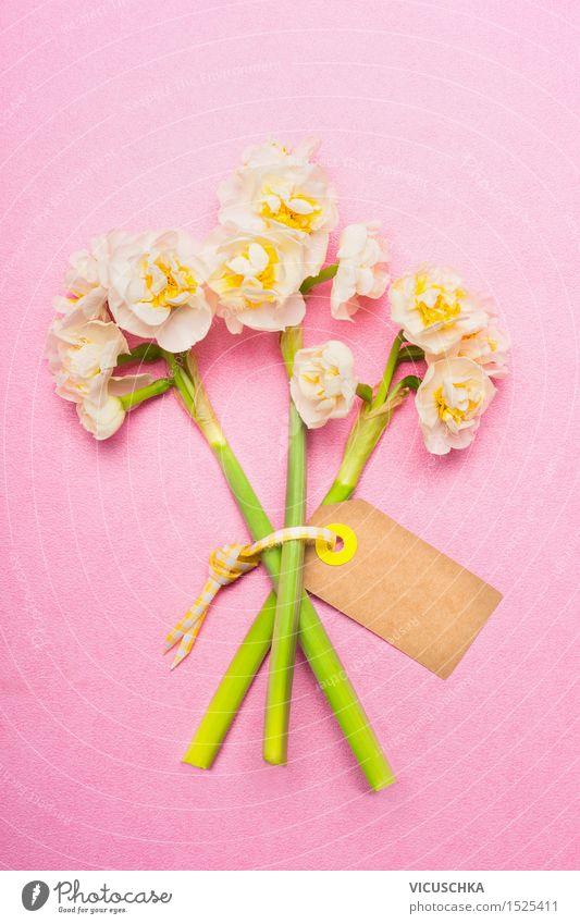 Schöne BlumenStrauß. Narzissen mit leere Etikett Karte Natur Pflanze Blatt gelb Liebe Blüte Frühling Stil Feste & Feiern rosa Design elegant
