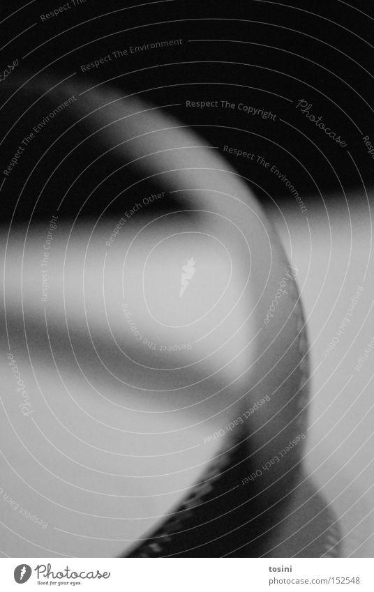 analoges digitalisiert Filmmaterial Rolle Schwung alt retro Dia negativ Handwerk schwarz weiß Kino Fotografie Schwarzweißfoto