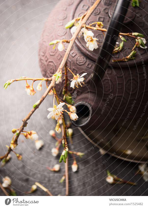 Eisen Teekanne mit frischen Blüten Getränk Heißgetränk Lifestyle Stil Natur Blatt Design Chinese Kirschblüten Zen Teehaus Teeladen Farbfoto Nahaufnahme