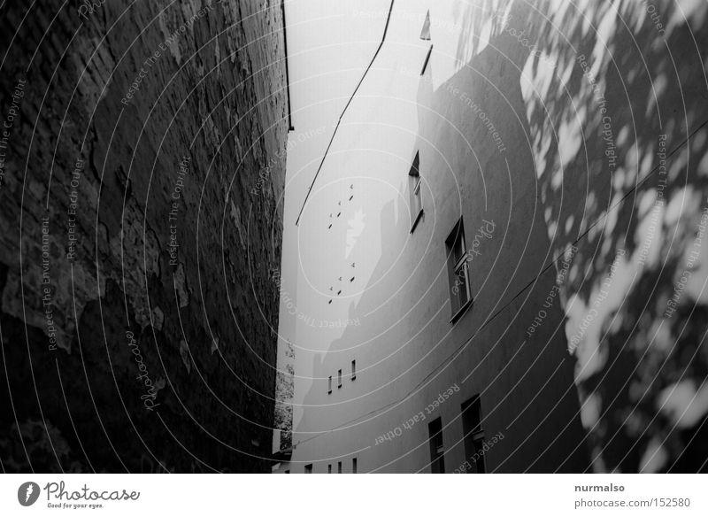 Durch Fahrt Weite Durchgang Haus Brandschutz Fenster Schatten tief Wand Stadt Stein Putz Symmetrie Geometrie Strukturen & Formen analog mono Architektur