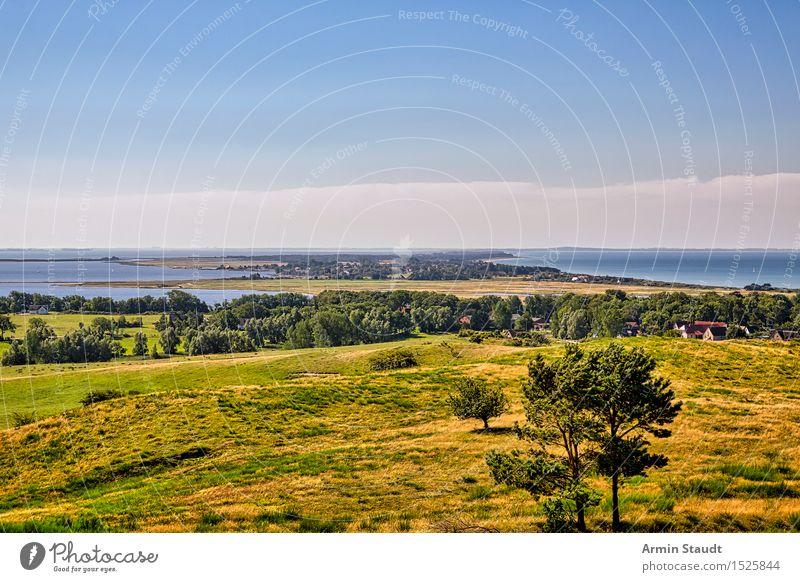 Landschaft - Hiddensee harmonisch Zufriedenheit Erholung ruhig Ferien & Urlaub & Reisen Tourismus Ausflug Ferne Sommerurlaub Meer Insel Umwelt Natur Pflanze