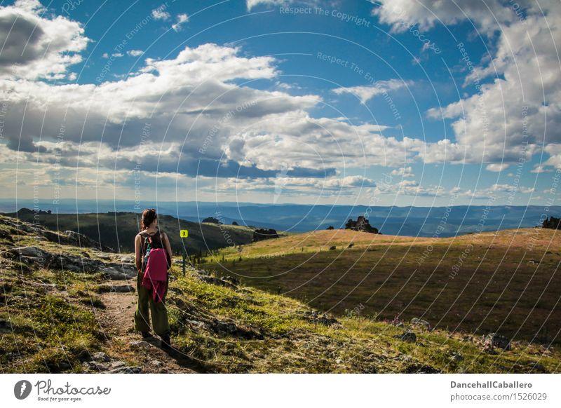 wandern in Alaska... Mensch Himmel Ferien & Urlaub & Reisen Jugendliche Sommer Junge Frau Landschaft Wolken Ferne Berge u. Gebirge Wiese Wege & Pfade feminin