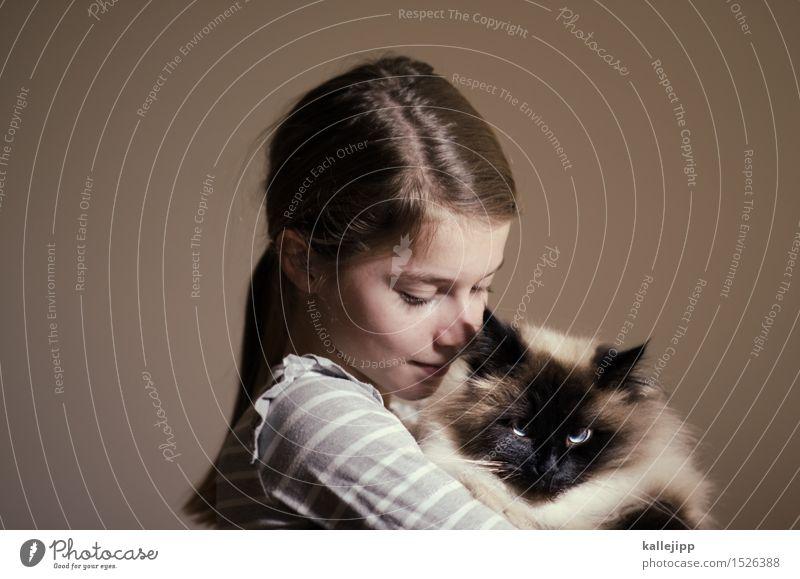 wollrausch Katze Mensch Tier Mädchen Gesicht Liebe Haare & Frisuren Kopf Kindheit Lächeln festhalten Fell Haustier Hauskatze Halt Zuneigung