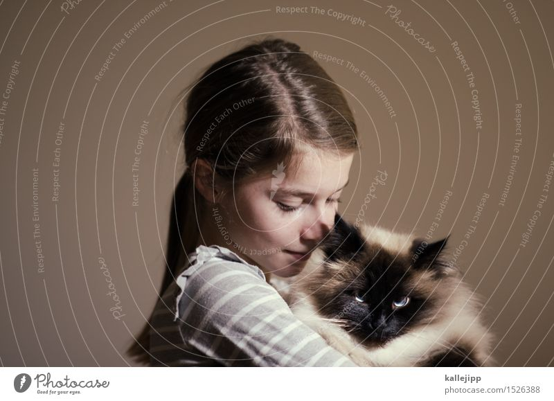 wollrausch Mensch Mädchen Kopf Haare & Frisuren Gesicht 1 Tier Katze Fell Lächeln Liebe Zuneigung Haustier Halt festhalten Kindheit Hauskatze Tierliebe Farbfoto