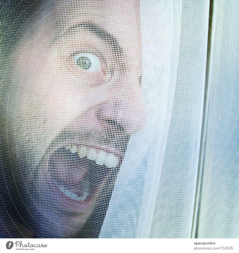 Der nette Nachbar von nebenan Mensch Mann Freude Fenster geheimnisvoll Stoff Vorhang hängen Gardine Entsetzen privat verborgen Sichtschutz