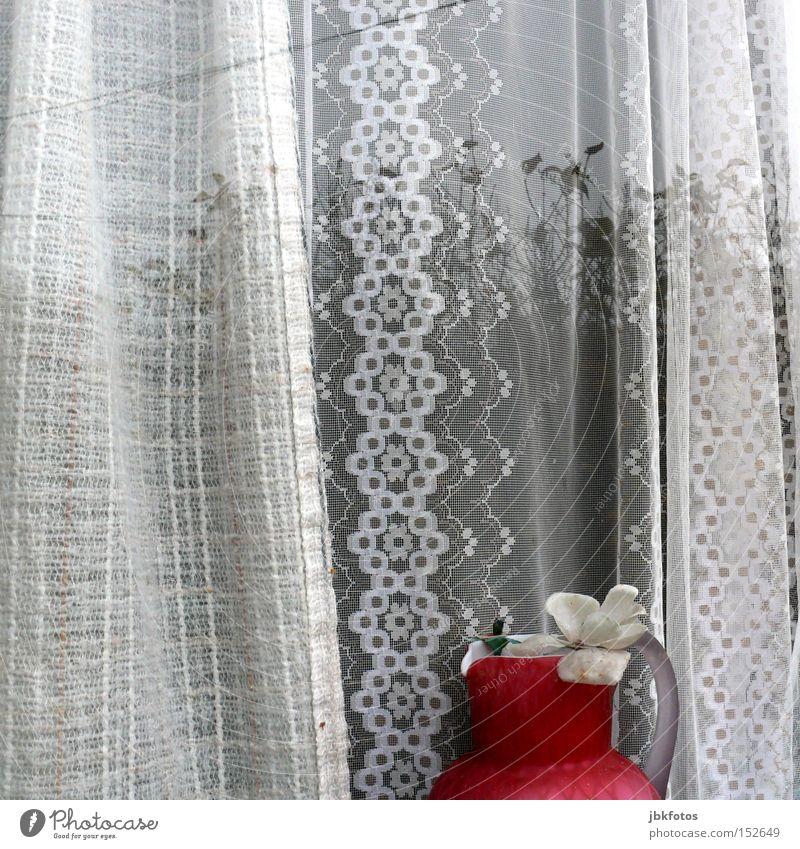PFLEGESTUFE III Fenster Vase alt Einsamkeit Fensterscheibe Reflexion & Spiegelung Baum Blume Gardine weiß rosa Haushalt jbkfotos Reflexion u. Spiegelung
