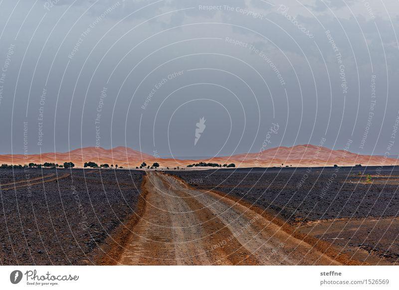 Wüste (10/10) Ferien & Urlaub & Reisen Wärme Straße Sand Tourismus Abenteuer Düne Durst Naher und Mittlerer Osten Arabien Marokko Sahara Schotterstraße